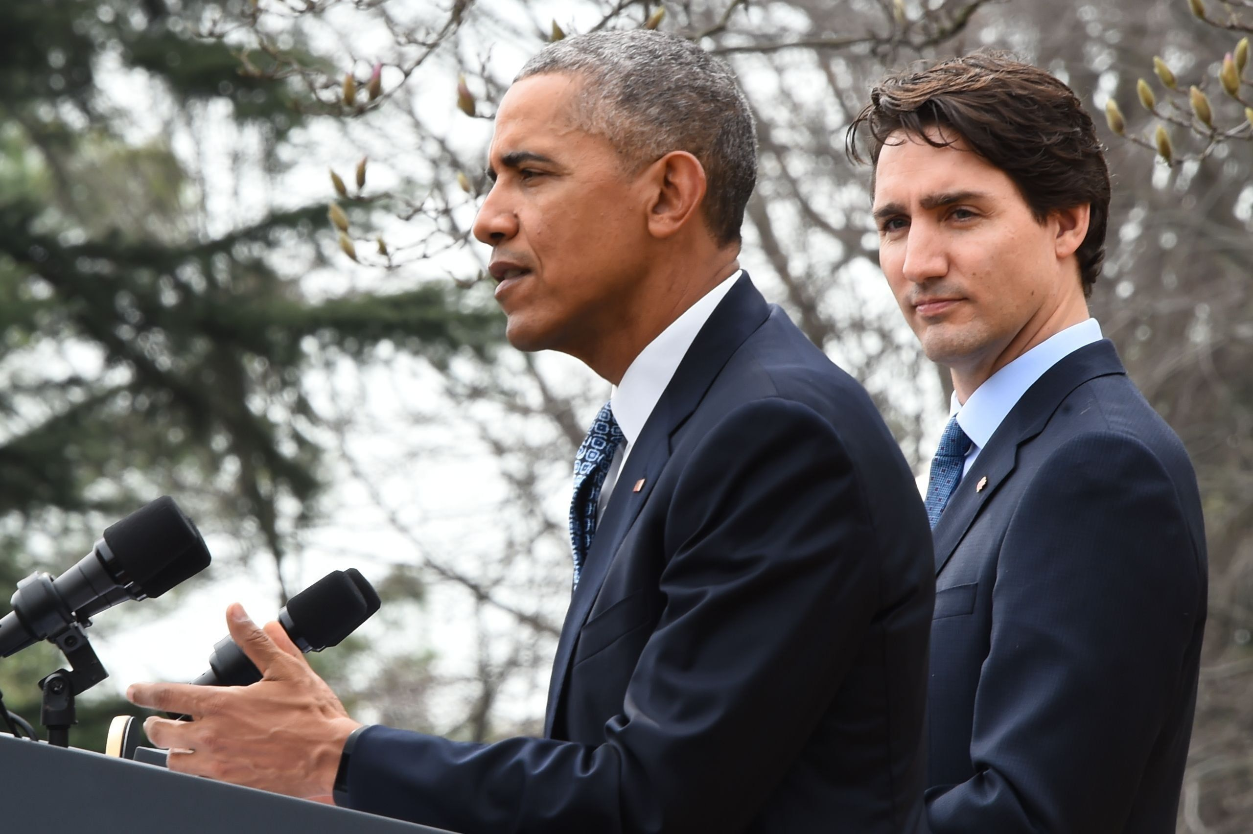 US President Barack Obama (R) and Canada's Prime Minister Justin Trudeau hold a press conference in the Rose Garden of the White  House on March 10, 2016 in Washington, DC. / AFP / Jim Watson        (Photo credit should read JIM WATSON/AFP/Getty Images)
