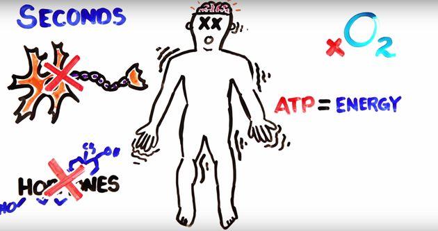 Body depletes energy