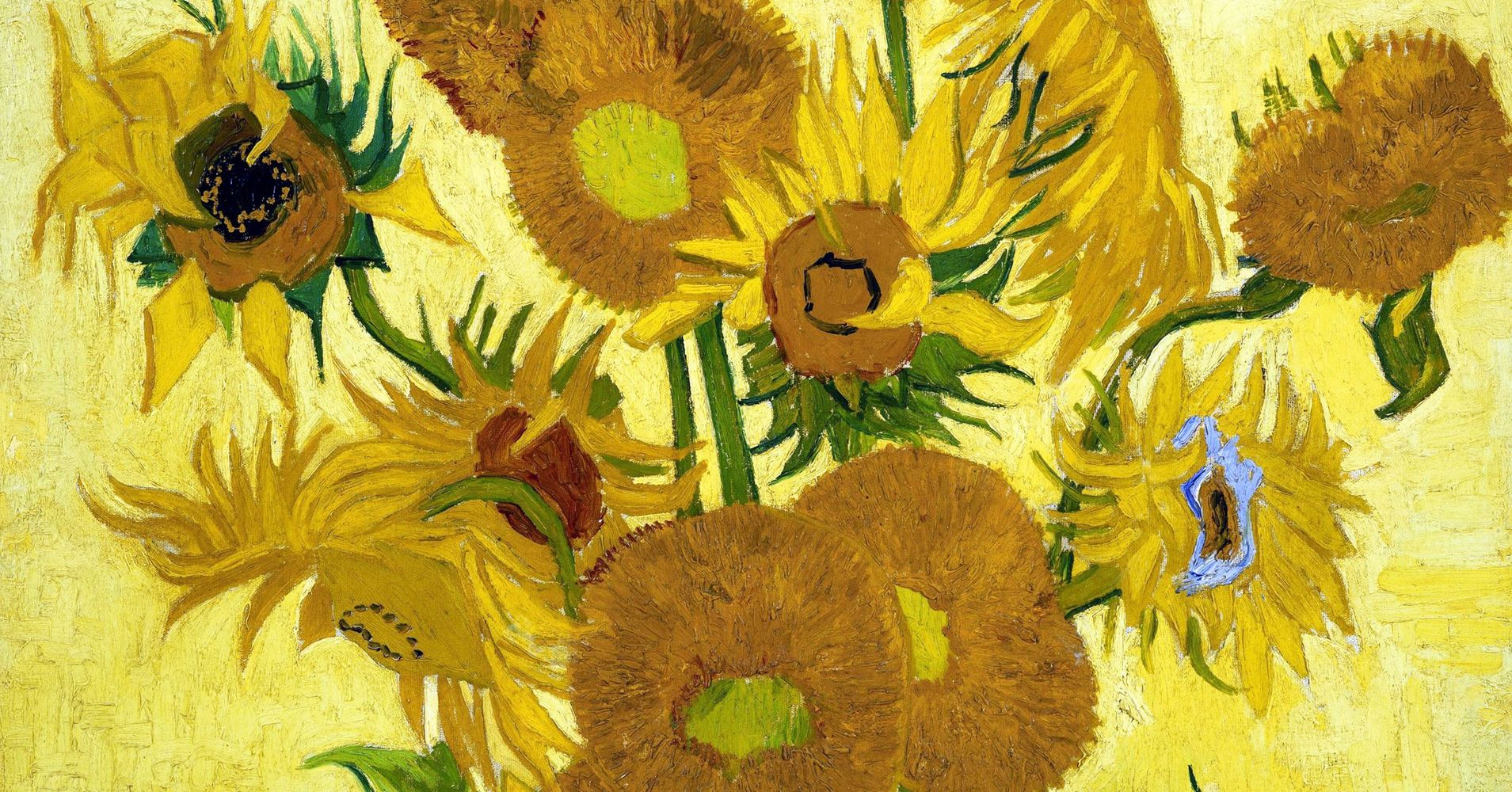 Van Gogh Museum Plans To Restore Iconic Sunflowers Painting
