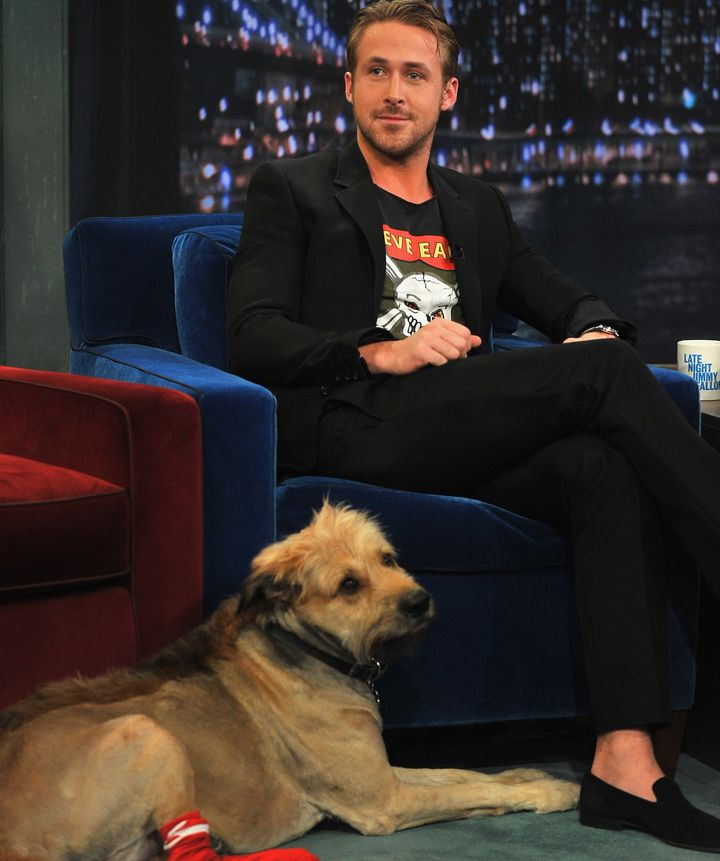 """Ryan Gosling and George on """"Late Night With Jimmy Fallon"""" in 2011."""