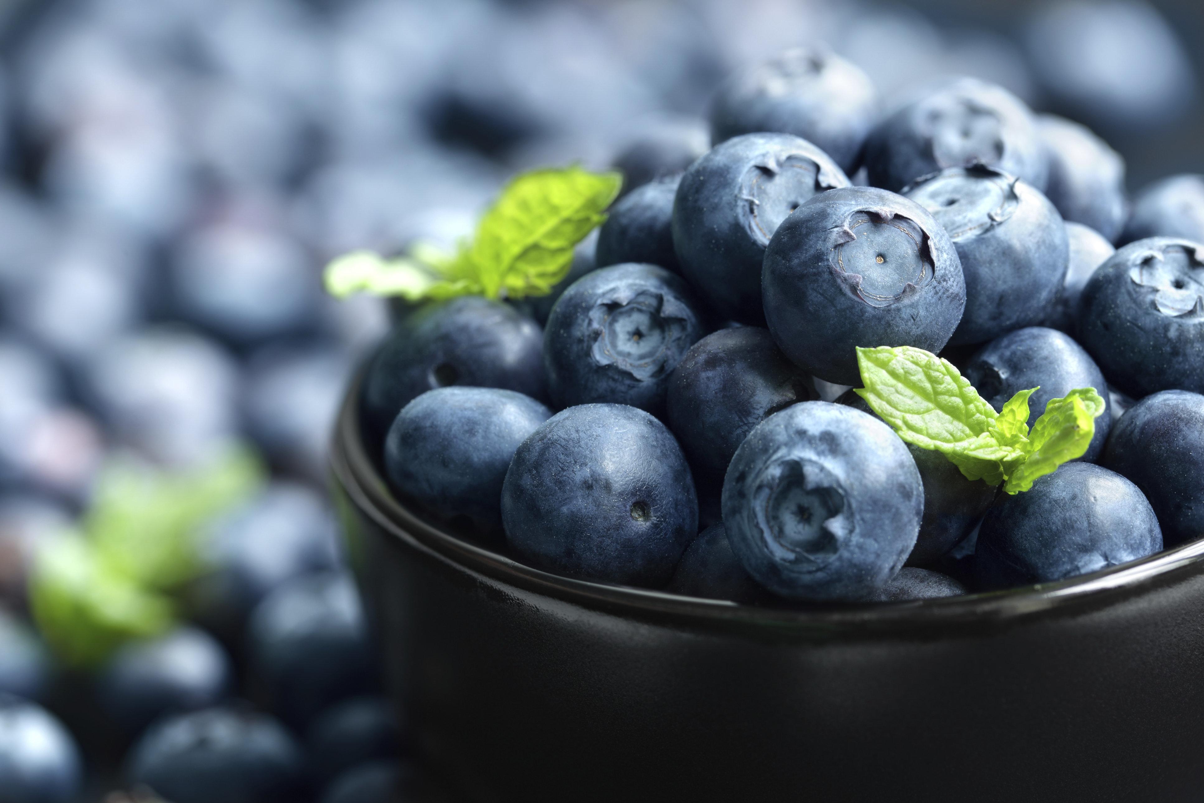 Eating Blueberries 'May Help Prevent Alzheimer's