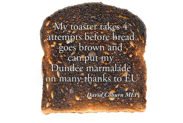 UKIP MEP's Tweet about his burnt toast and how the EU is to
