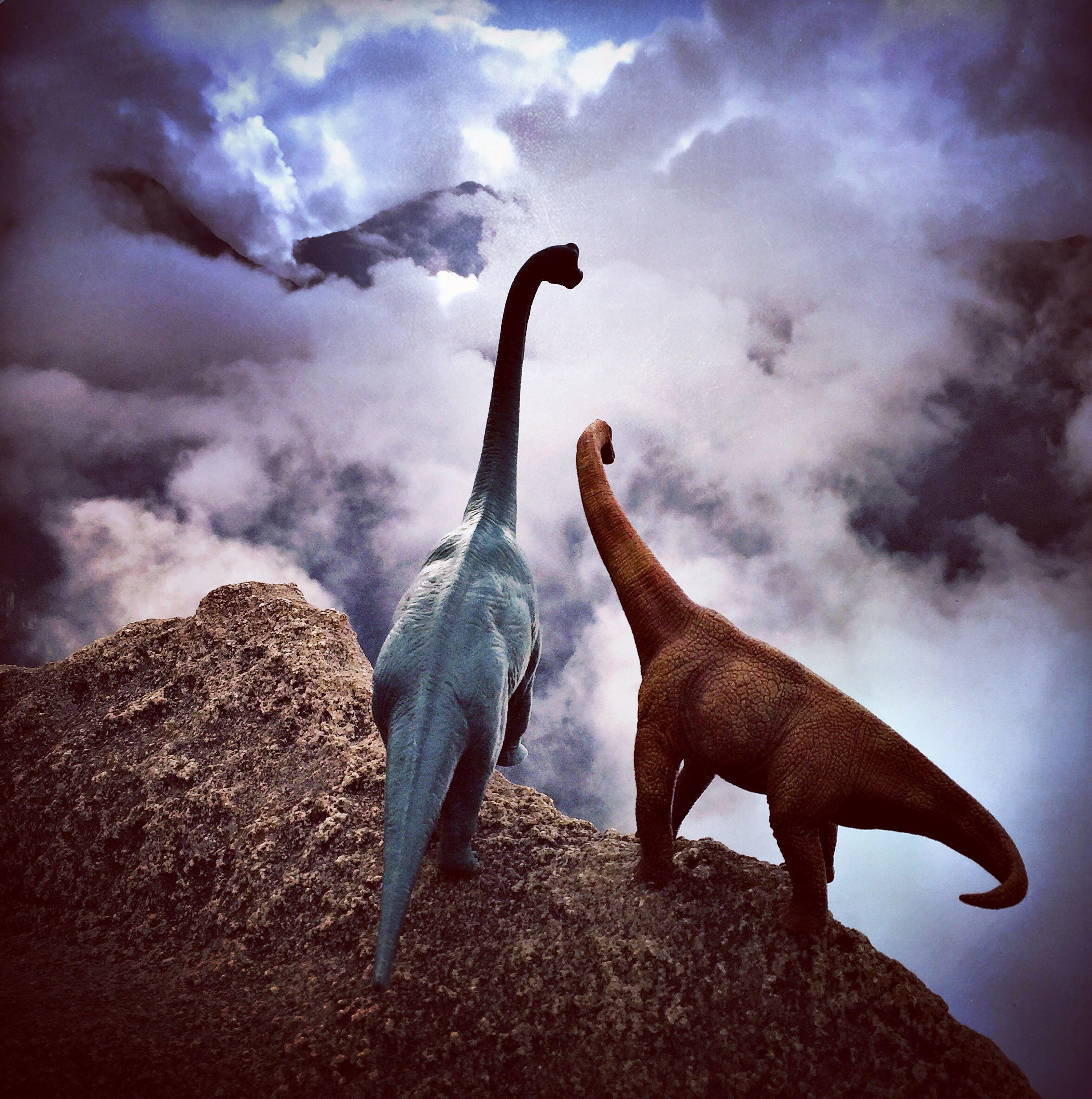 飛行機に乗って世界をぐるり どこかほっこりする恐竜たちの旅【画像】