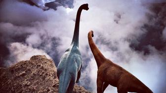 PIC BY JORGE SAENZ / CATERS NEWS - (Pictured: Jorge Saenzs toy dinosaurs in Peru) These incredible images may look like a scene from The Land Before Time, but they are actually created using TOY DINOSAURS. Professional photographer Jorge Saenz began the inventive series as a fun side project to his regular job. On his travels, Jorge has snapped the dinosaurs in countries such as Argentina, Brazil, Chile, Peru and Paraguay. Some of the scenes, such as those atop of mist-covered mountain ranges, look as though they were taken 100 million years ago. - SEE CATERS COPY