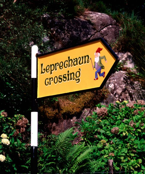 Leprechauns are actually protected from destruction under European law. The Sliabh Foy Loop trail in the town of Carlingford,