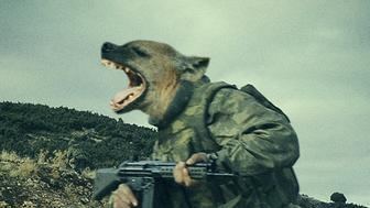 """Kingdom of Hyenas"""