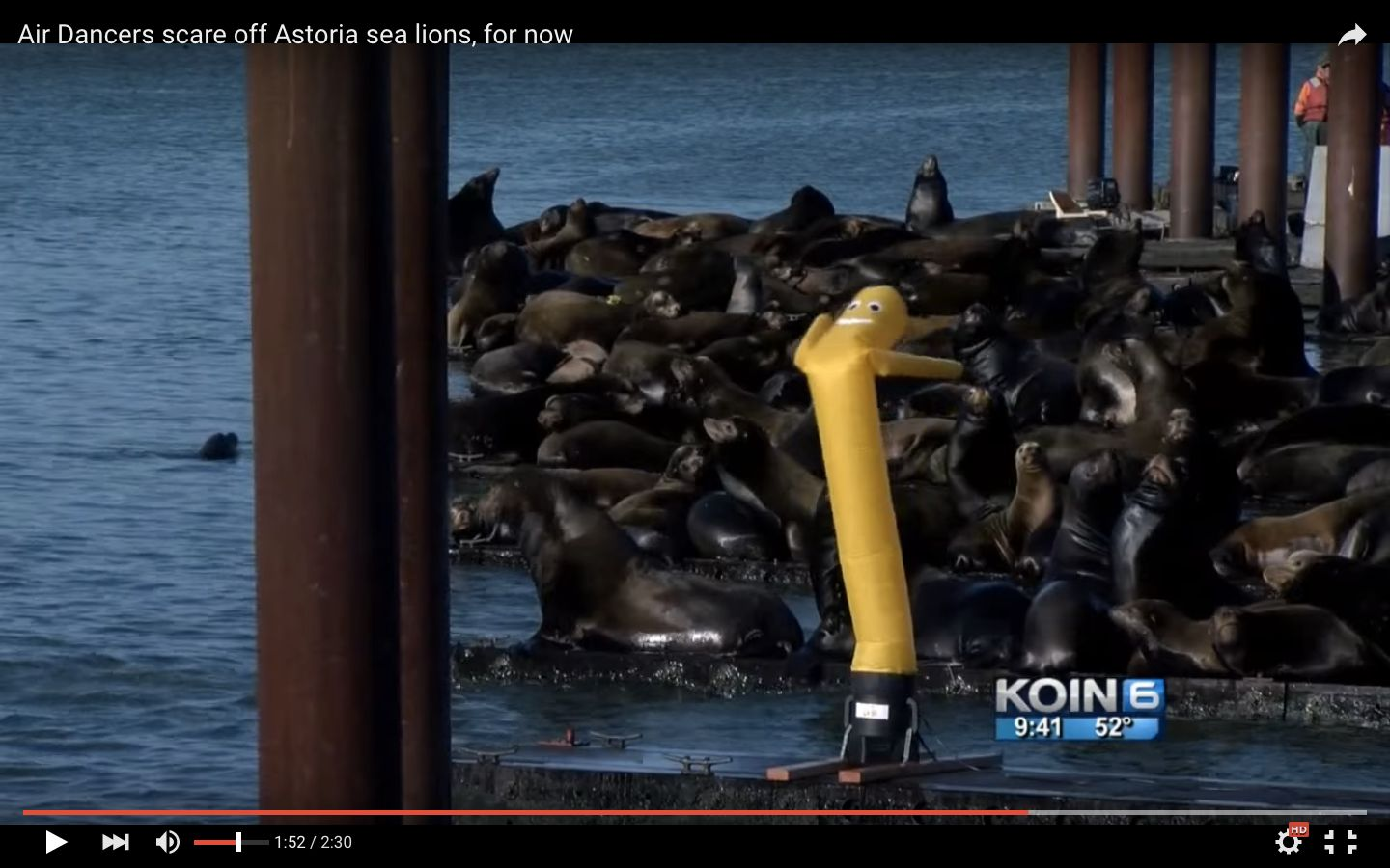 Inflatable tube dancers are being used to scare sea lions from docks in Oregon.