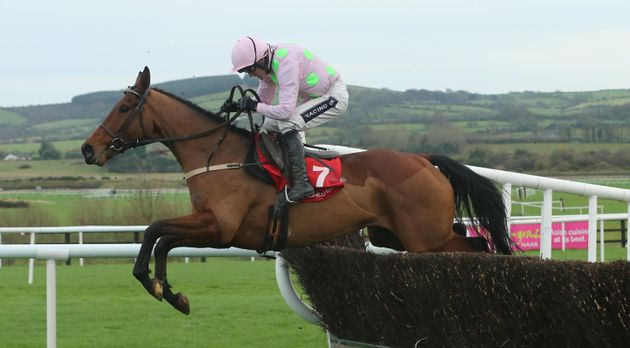 8-year-old Pont Alexandre pictured here at a race day in Co. Kildare,