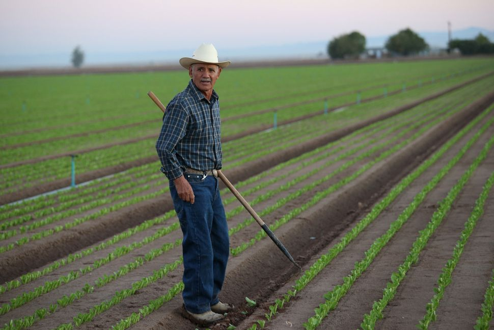 mexican migrant workers essay Essay on ethnic migrant workers development, however, is the contribution of the migrant workers outsiders often view china as a rather homogenous country securing 'decent' conditions for migrant workers essay.
