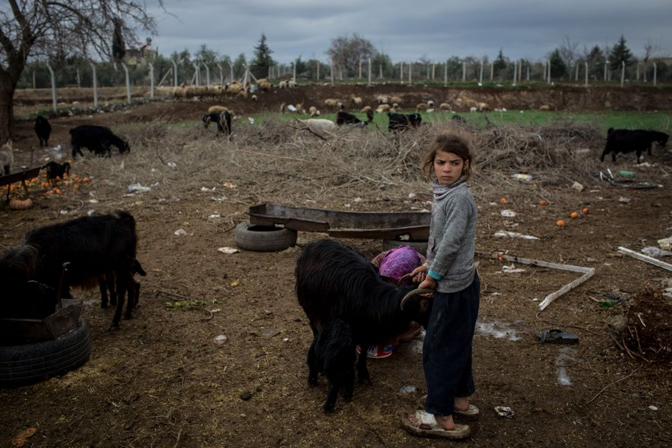 Syrian refugee Vermin and sister Yasmin work at a farm in Kilis, Turkey. Kilis a city located just 6 milesfrom the Syri