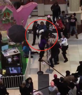 An Easter Bunny enactorand another mall visitor threw punches on Sunday.