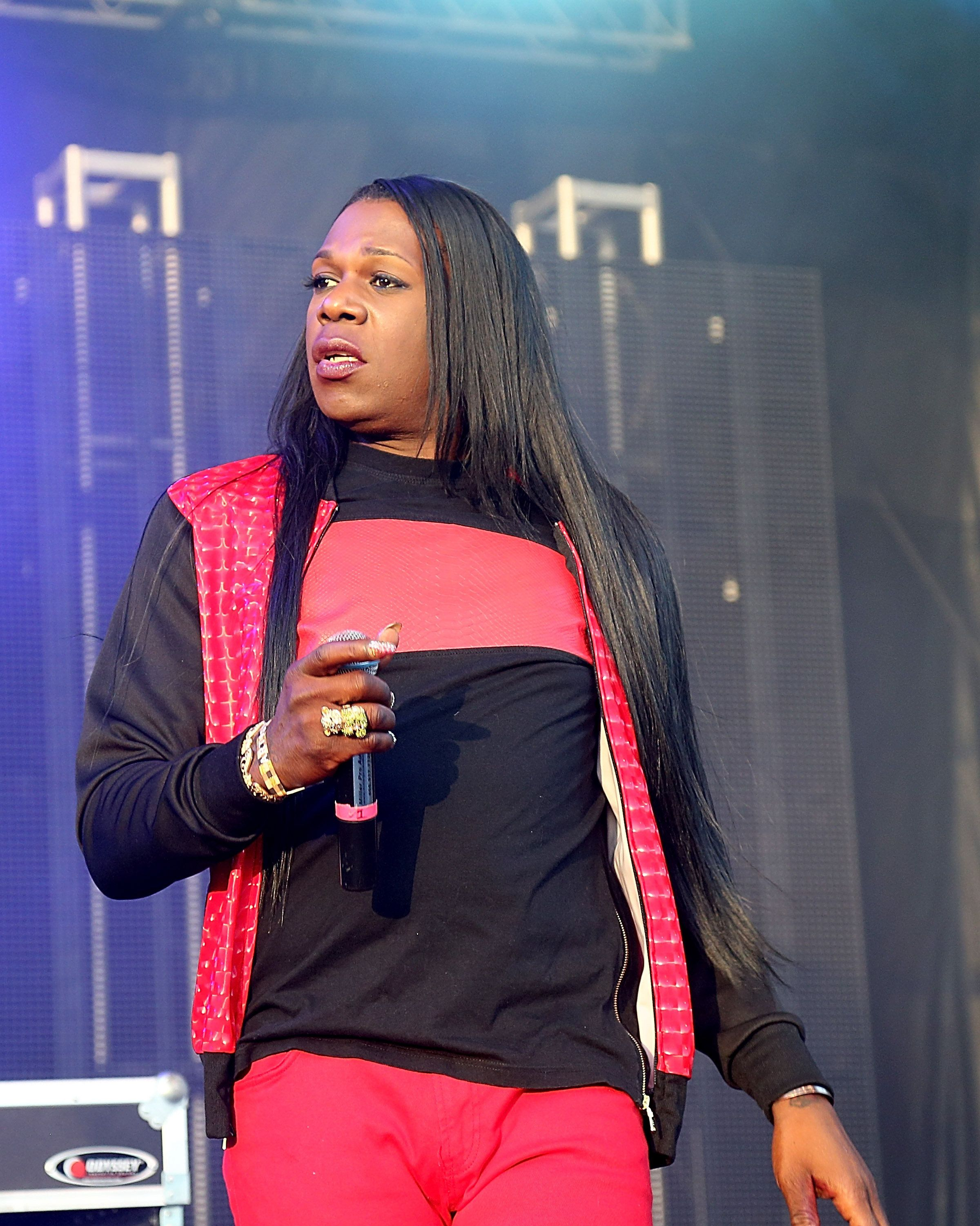 AUSTIN, TX - NOVEMBER 08:  Big Freedia performs in concert during Day 3 of Fun Fun Fun Fest at Auditorium Shores on November 8, 2015 in Austin, Texas.  (Photo by Gary Miller/Getty Images)