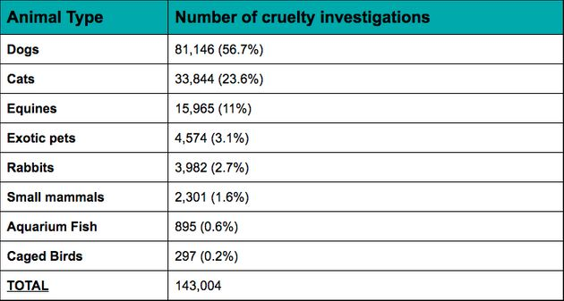 RSPCA Cruelty Statistics Reveal Dogs Are Most Abused Pet In The