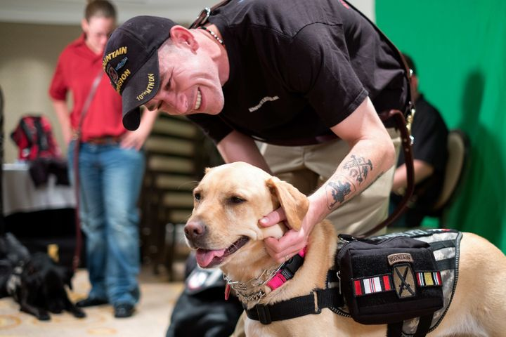 A veteran with his service dog.