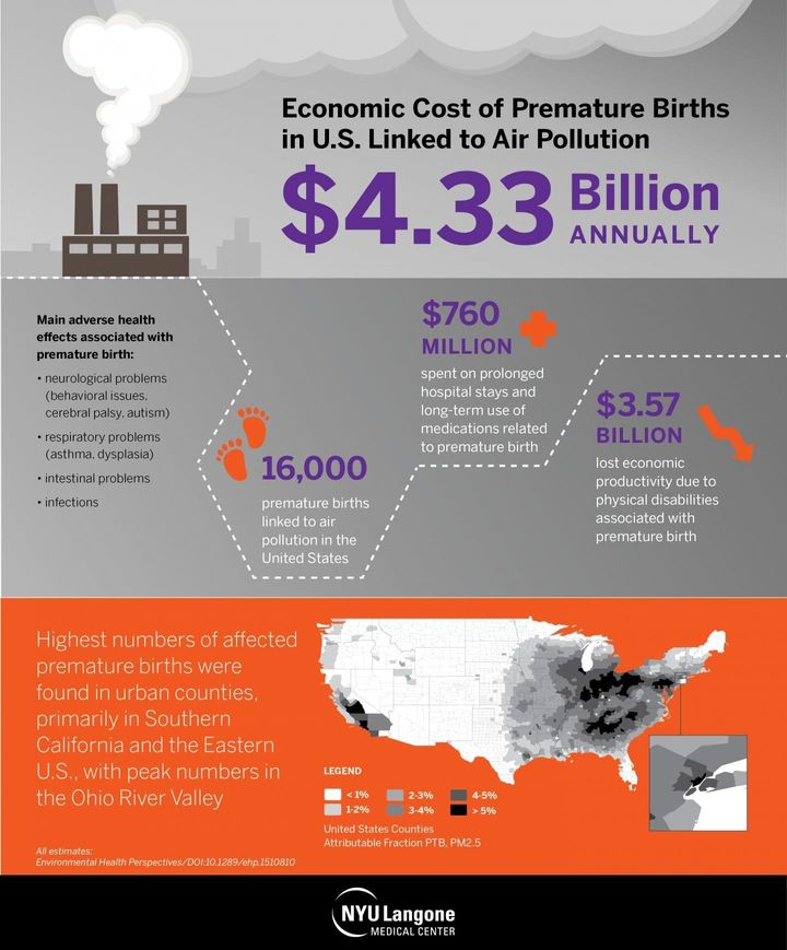 This infographic shows that the economic cost of premature births linked to air pollution is $4.3 billion.