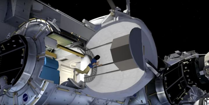 This image, taken from a rendering of BEAM attached to the ISS, shows a cross-section of the structure once inflated.