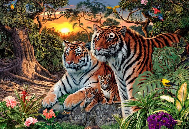 No One Can Agree On How Many Tigers Are In This