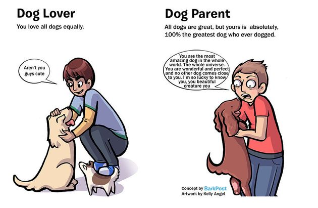 Hilarious Comic Nails What It's Like To Be A Dog Parent vs. A Dog Lover 570291bc1500002a000b3f41