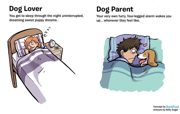 Hilarious Comic Nails What It's Like To Be A Dog Parent vs. A Dog Lover 5702924c1e0000b300706212