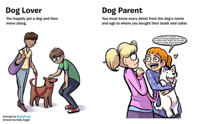 Hilarious Comic Nails What It's Like To Be A Dog Parent vs. A Dog Lover 570293402e00002d009505aa