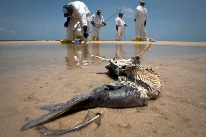 The Deepwater Horizon drilling rigexplosion at BP's Macondo undersea well in the Gulf of Mexico killed11 workers