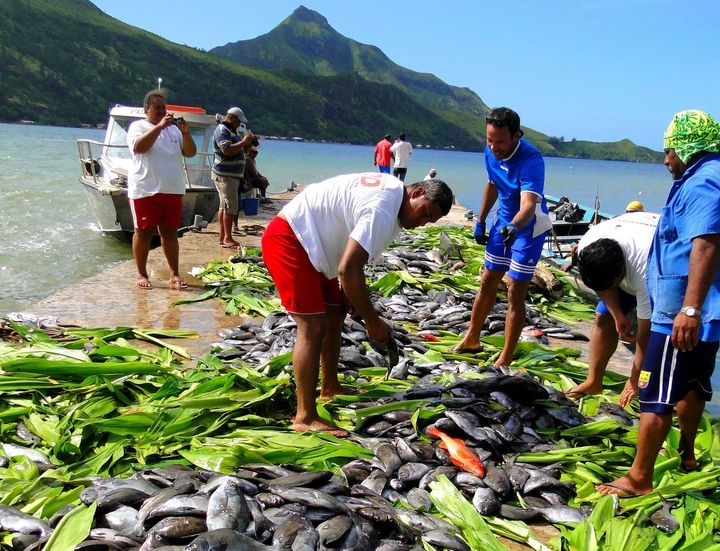 The Austral Islands' proposal would establish sustainable fishing areas extending 20 miles from each of the chain's five inha