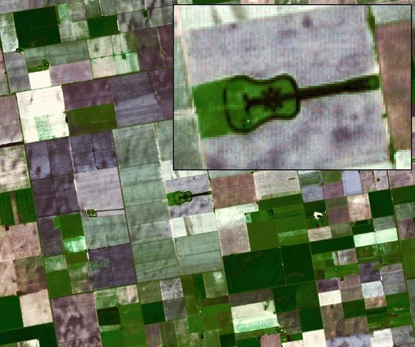 Located in the fertile agricultural region of Argentina's Pampas is a guitar-shaped forest made up of cypress and eucalyptus