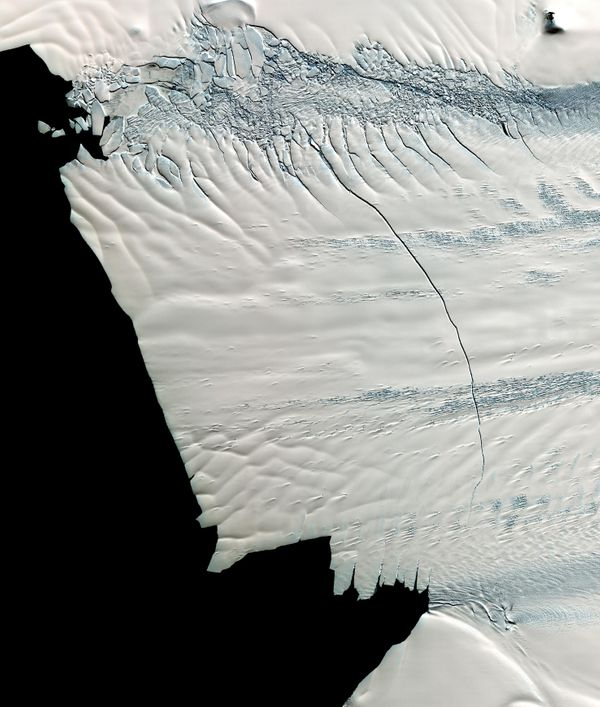 In mid-October 2011, NASA scientists working in Antarctica discovered a massive crack across the Pine Island Glacier, a major