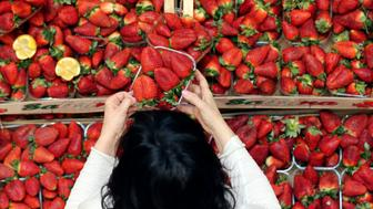 A costumer get a strawberries basket at the Eataly food market store entrance in the former Smeraldo teather downtown Milan, Italy, March 20, 2016.     REUTERS/Stefano Rellandini