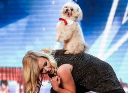 'BGT' Moves On From Dancing Dog Controversy With This Adorable Pooch