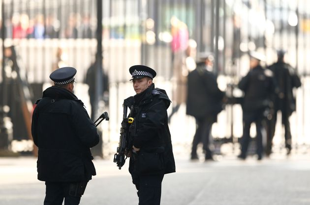 The Metropolitan Police says it has appropriate plans in place ahead of the demo at Downing