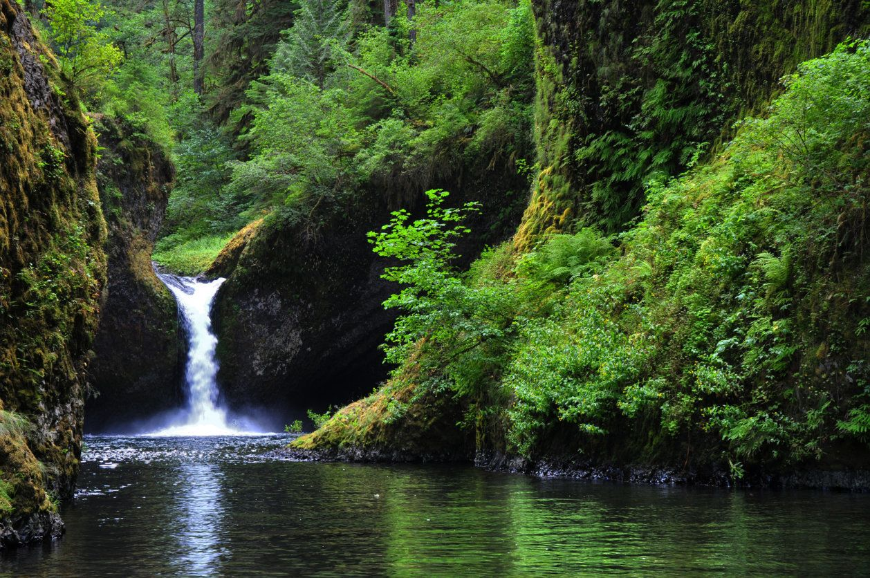 Punchbowl Falls in the Columbia River Gorge