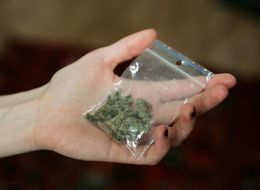 Half Of People Support Legalising Cannabis - 'So Why Won't The Main Party Leaders Discuss It?'