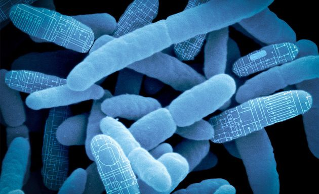 Synlogic is harnessing the power of the microbiome to create a new class of living