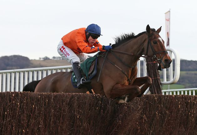 Kings Palace, pictured with jockey Tom Scudamore at Cheltenham, was destroyed after he was pulled up...
