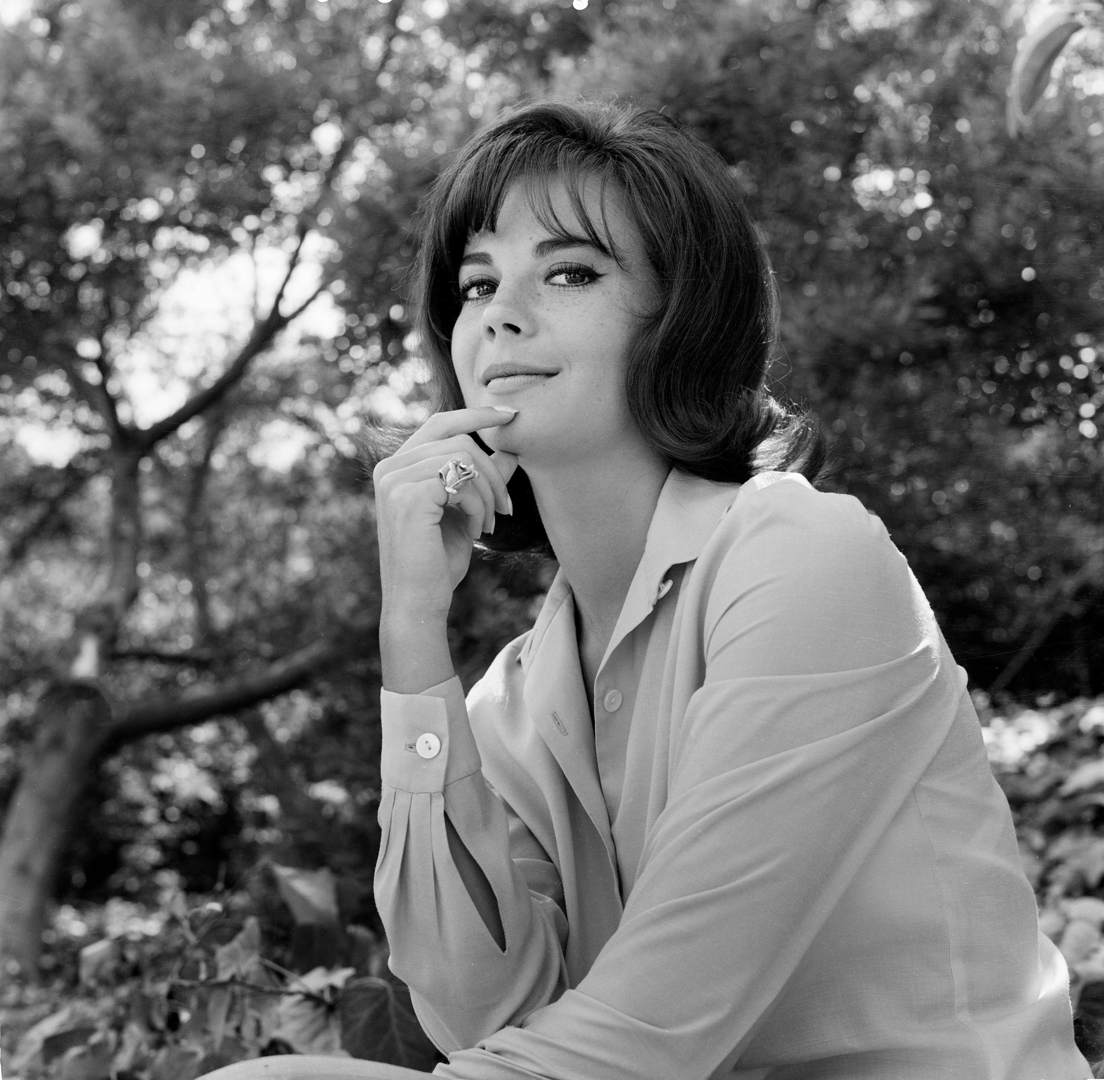 LOS ANGELES,CA - FEBRUARY 1956: Actress Natalie Wood poses for a portrait in Los Angeles,CA. (Photo by Earl Leaf/Michael Ochs Archives/Getty Images)