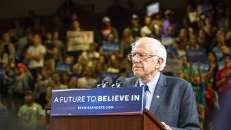POUGHKEEPSIE, NEW YORK - APRIL 12: Senator Bernie Sanders speaks at his rally at McCann Arena at Marist College on April 12, 2016 in Poughkeepsie, New York. (Photo by Kenneth Gabrielsen/Getty Images)