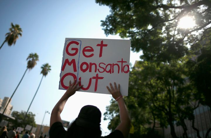 Many Americans believe GMO foods are unsafe to eat, despite the scientific community's support of biotechnology.