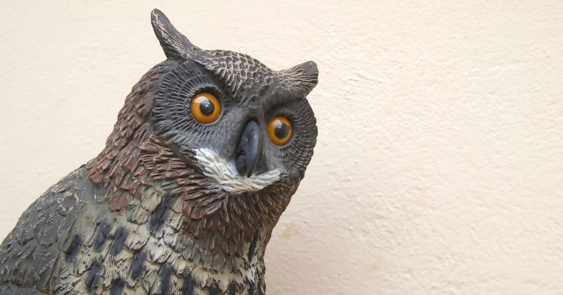 Owl lawn ornaments - This Adorable Little Girl S Friendship With An Owl Lawn Ornament Is A Hoot Huffpost