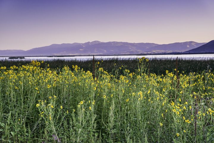 North Beach State ParkatBear Lake Valley in Idaho.