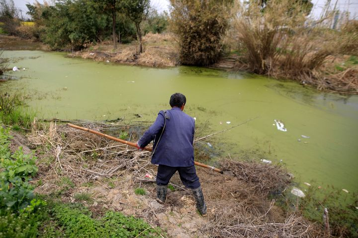 A farmer works on a polluted river in Shanghai, China, March 21, 2016.