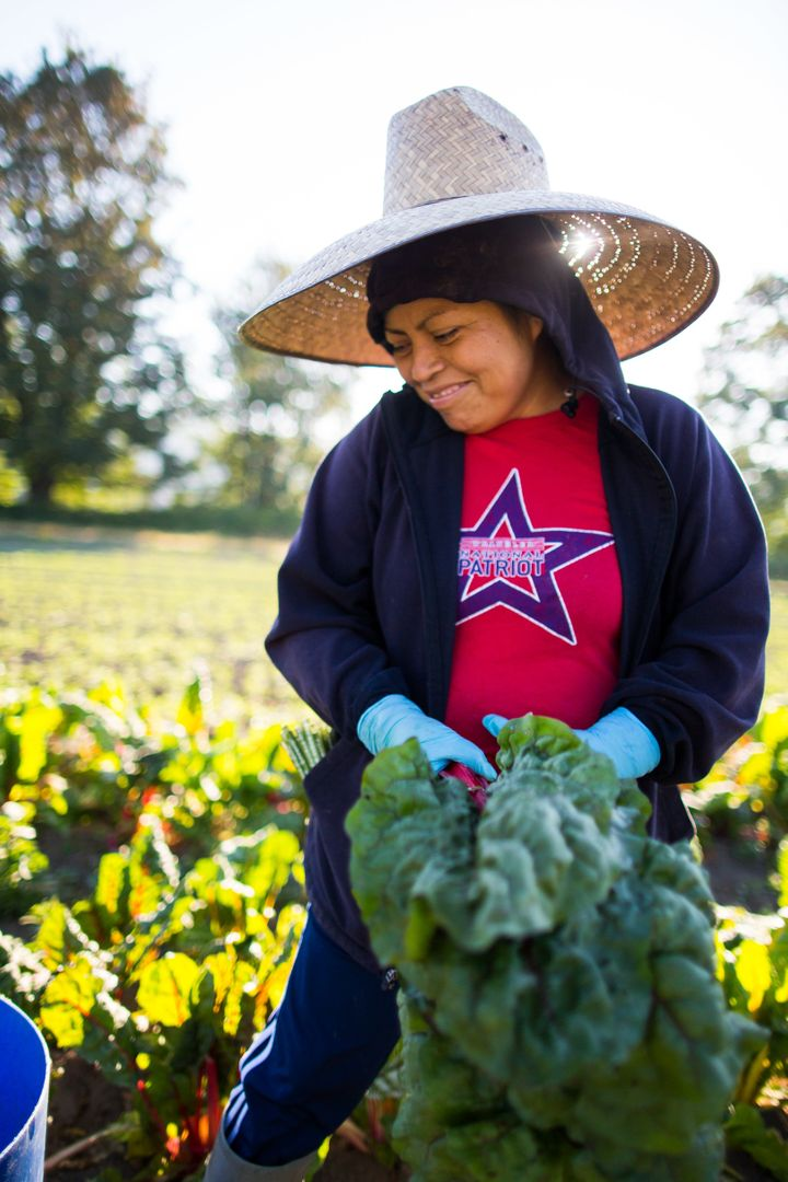 Yolanda Hernandez is a member of the field crew at Oxbow Farm in Carnation, Washington.
