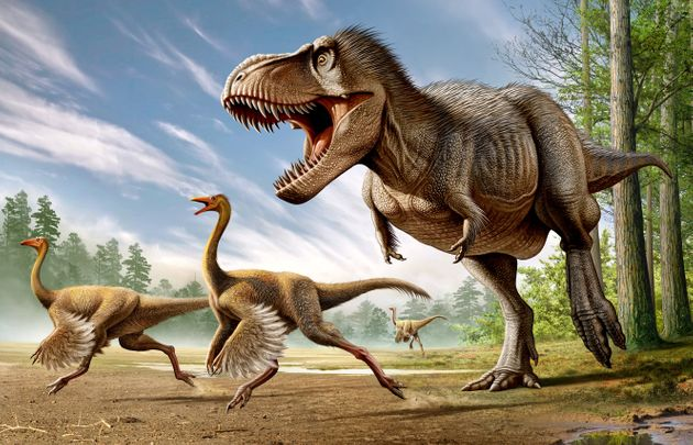 Even dinosaurs such as the Tyrannosaurus rex were starting to die out before the meteor