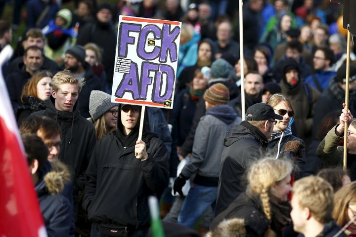 Demonstrators protest against the Alternative for Germany party in Hanover, Germany, on Nov. 28, 2015.