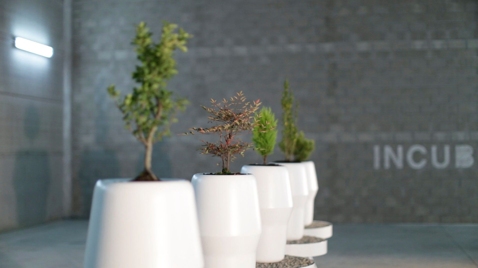 Bios Urn is a biodegradable urn that converts ashes into a tree.