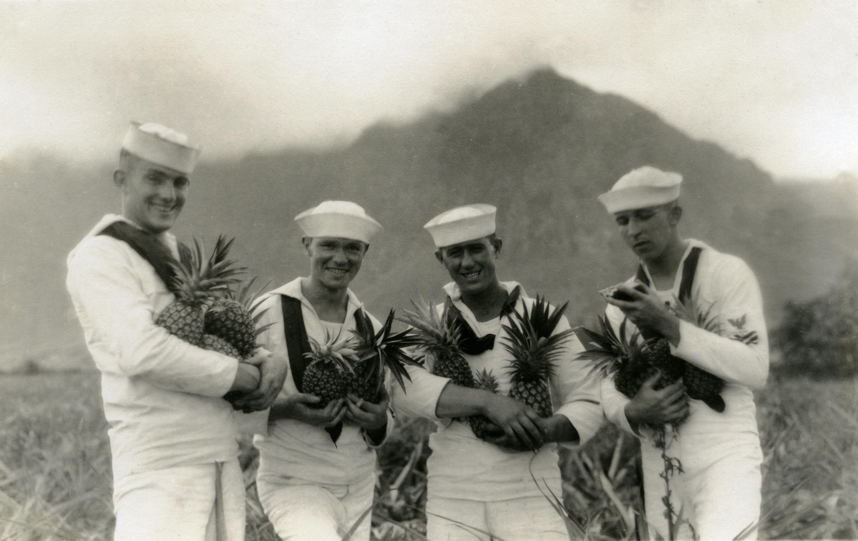 Pineapple fields, Hawaii, circa 1936