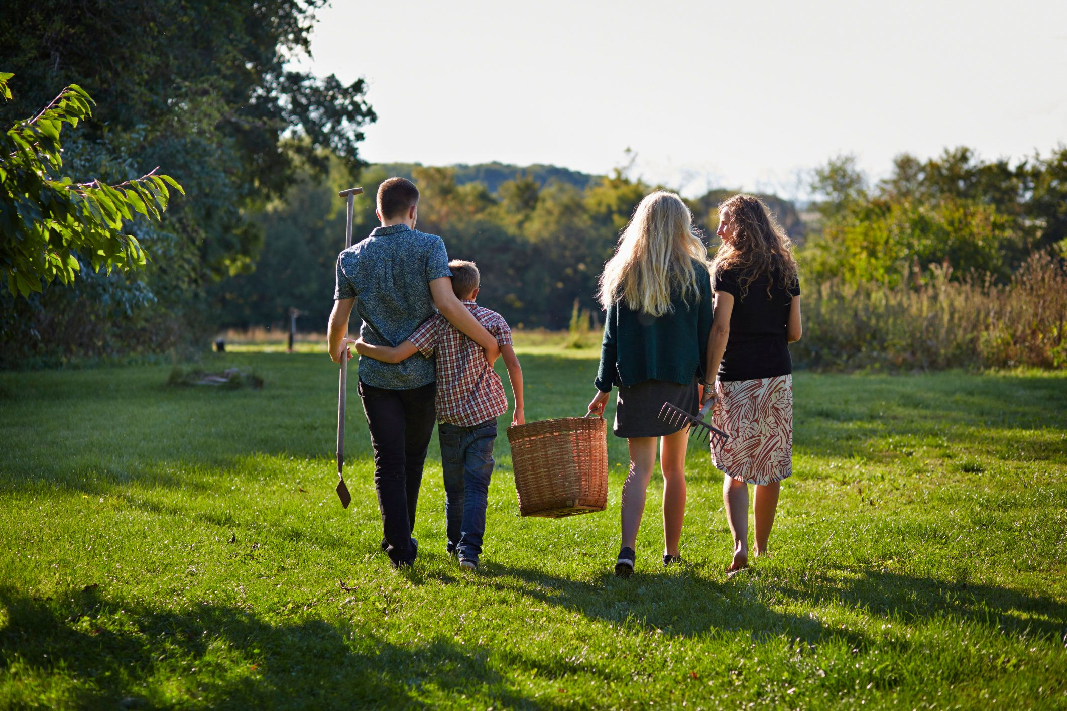 Family walking down green lawn, carrying basket. Back to camera