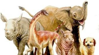 A baby Rapetosaurus depicted among modern baby animals for size comparison.