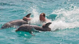 swimming with two dolphins - for more of Curacao   click here