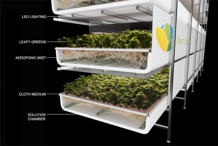 Aeroponics is just one form of indoor farming.